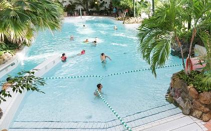 Subtropisch zwembad Limburg